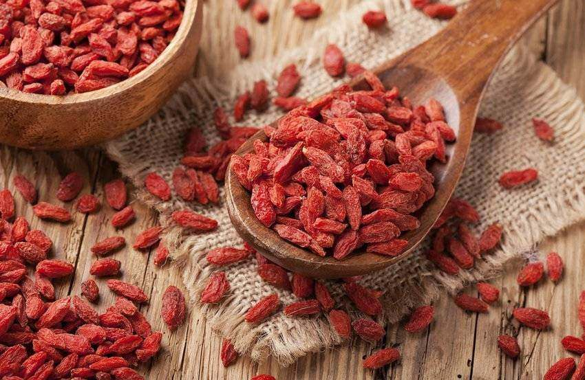 The Incredible Health Benefits of Goji Berry
