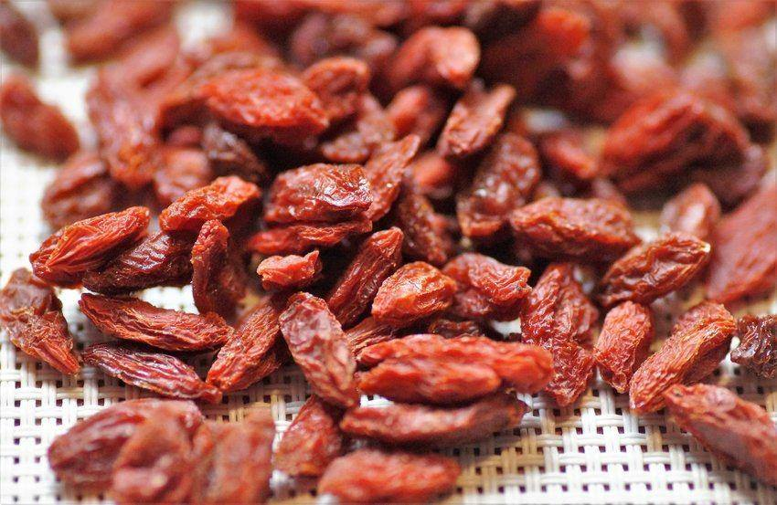goji berry-dried